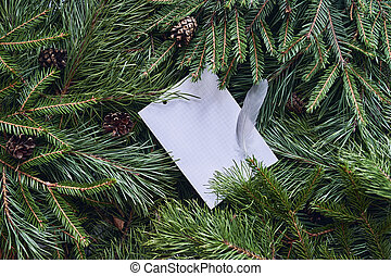 White leaf with a bird's feather for text on a Christmas background of green spruce and pine branches