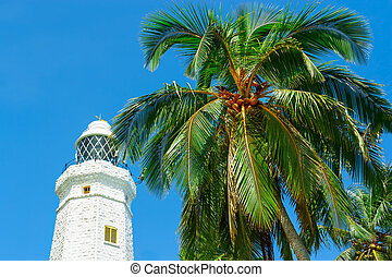 White lighthouse and tropical palms.