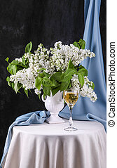 White lilac  - Still life with white lilac in vase