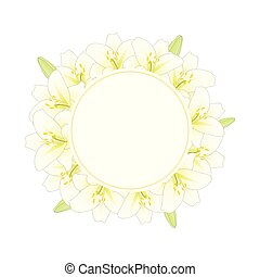 White Lily Banner Wreath