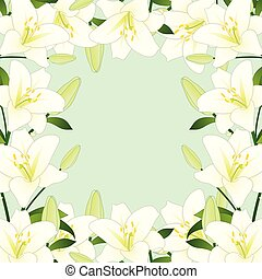 White Lily Border on Green Mint Background2