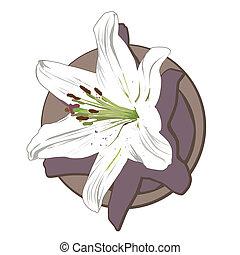 white lily clip art