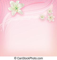 white lily