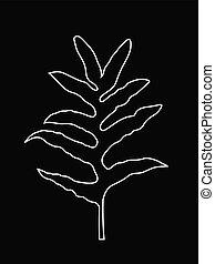 White Line Art of Fern Leaf, Tropical Jungle Leaves, Outline Leaves Vector Illustration, White Color on Black Background