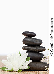White lotus blossom with a black stones stack