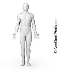 White male - 3d rendered illustration - white male