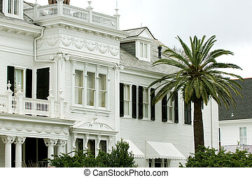 Garden district - White mansion with palm tree on foreground...