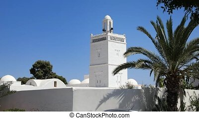 white mosque in Tunis city. Full HD