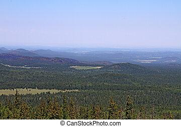 White Mountains view to the Rim