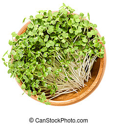 White mustard microgreen in wooden bowl over white