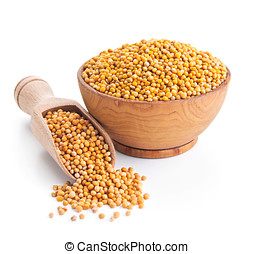 white mustard seeds isolated on white