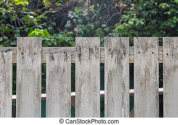 White old wooden fence with flower and tree background