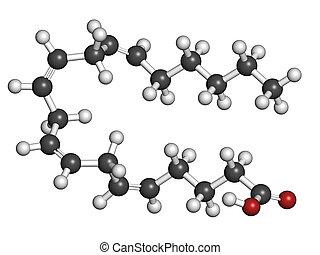(white), omega-6, 色, (red), model., (aa, ara), 水素, 従来である, 酸...