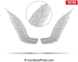 White open angel wings. Vector.