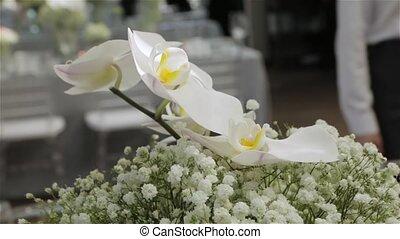 White orchids flowers design floristics interior white flowers luxury expensive decoration set banquet wedding table camera movement
