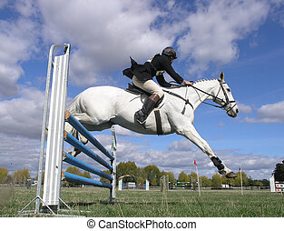 White Over Blue - A white horse clearing a jump at a two day...