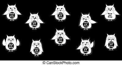 White owl with black background