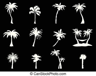 white palm tree icon on black background