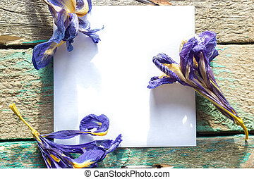 White paper on the wooden background with dried flowers Iris
