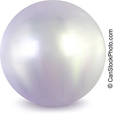 White pearl. Vector - Pearl on a white background. Vector...
