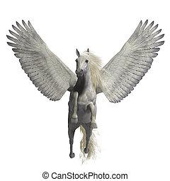 White Pegasus on White