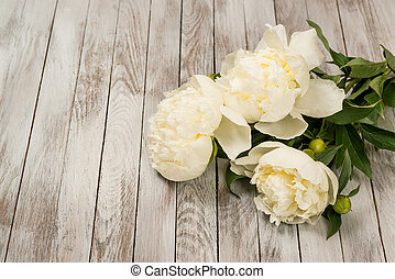 White peonies flowers on white painted wooden planks. Place for text. Square image. Top view.
