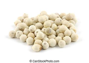 White peppercorns - Close up of white peppercorns in ...