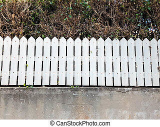 White picket fence next to pathway with bush behind.