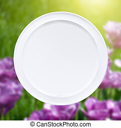 White plate against pink tulips with sun beam