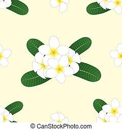 White Plumeria, Frangipani on Ivory Beige Background. Vector Illustration