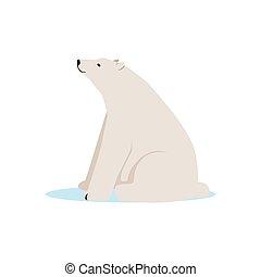 White polar bear animal, Arctic fauna species vector Illustration