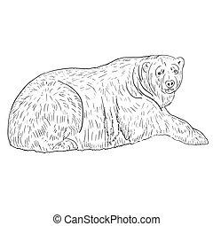 White Polar Bear. Vector illustration.