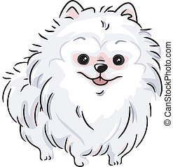 White Pomeranian - Illustration Featuring a White Pomeranian