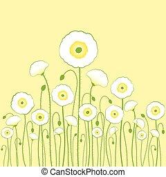 White poppy on light yellow background
