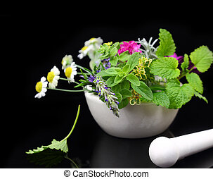 White porcelain mortar and pestle with fresh herbs on black background