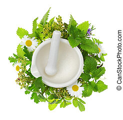 White porcelain mortar and pestle with fresh herbs around it