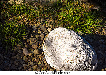 white porous stone lying on the gravel path with green grass