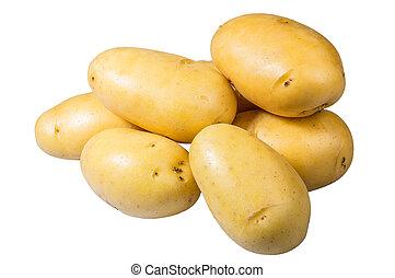 White potatoes fresh picked isolated on white