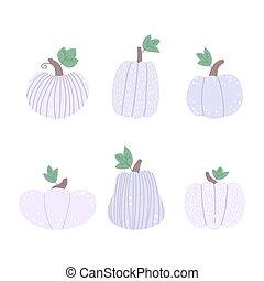 White pumpkins set on a white background.