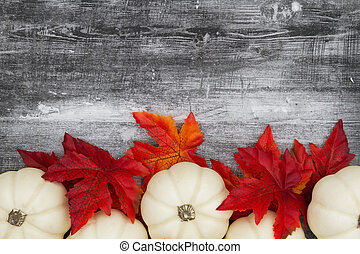 White pumpkins with fall leaves on weathered black grunge wood textured background