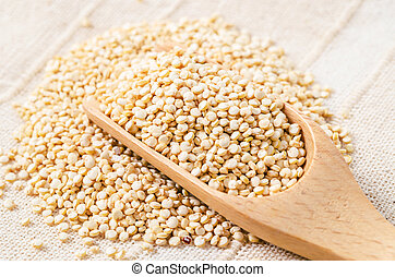 White quinoa seeds in wooden scoop.