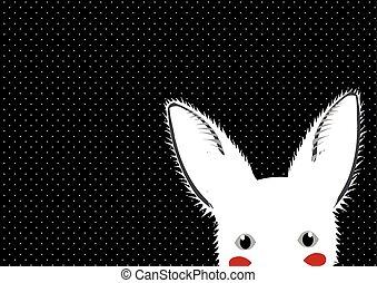 White Rabbit Dots Background
