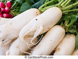 White radish seen at the market