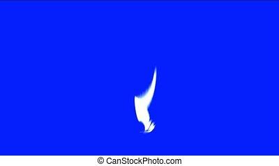 white ray light and fiber optic
