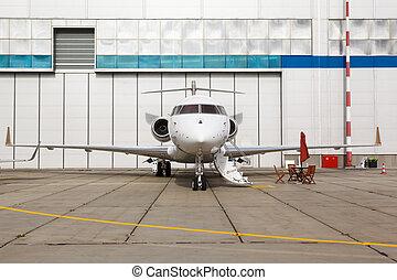White reactive private jet