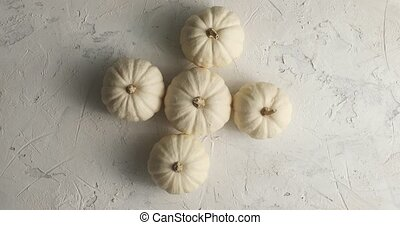 White ripe pumpkins laid together - From above view of white...