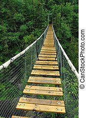 White River Suspension Bridge, Pukaskwa National Park,...
