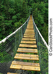 White River Suspension Bridge, Pukaskwa National Park,...