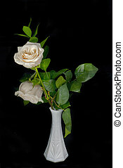 White Rose and Reflection