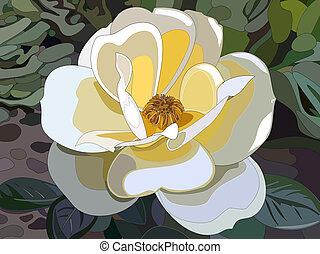 White rose - Illustration of a white rose in the garden.